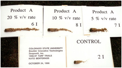 Colorado State University Research on Root Development