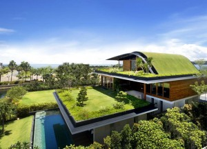 Green Roofs and Landscaping